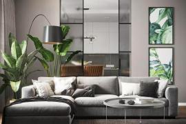 济南大业美家分享别怎样判断自己的家需要什么绿植来装饰?