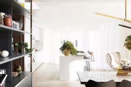 如何利用大型室内植物装饰家庭空间?